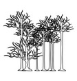figure trees without leaves icon vector image