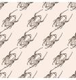 hand drawn engraving sketch scarab beetle may vector image