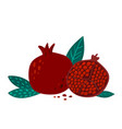 hand drawn pomegranate with leaves vector image