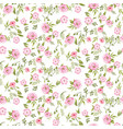 rose peony flowers seamless pattern texture on vector image