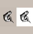 salmon fish vector image vector image