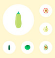 set of fruit icons flat style symbols with vector image vector image