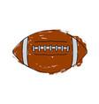 sketch of a football ball vector image