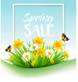 spring sale background with grass flowers and a vector image vector image