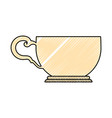tea cup isolated vector image vector image