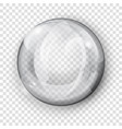 transparent gray sphere vector image vector image