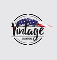 american made in usa retro vintage labels concept vector image vector image