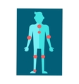 Anatomical Scheme of Human Body in Flat Design vector image vector image
