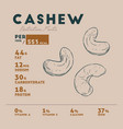 nutrition facts of cashew hand-drawn sketch vector image vector image