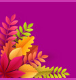 paper autumn leaves colorful background trendy vector image