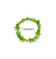 round green frame cannabis leaves and flowers vector image