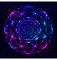 Sacred geometry symbol Mandala mystery element vector image vector image