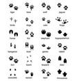 set footprints wild animals vector image vector image