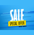 shopping sale banner layout vector image