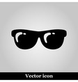 Sunglasses flat icon on grey background vector image vector image