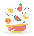 a plate fruit smoothie bowl proper diet vector image vector image