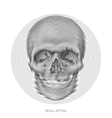 skull design element vector image vector image