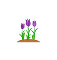 summer and spring blossom forest and garden violet vector image vector image