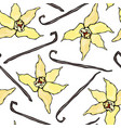 vanilla stick and flower seamless endless pattern vector image vector image