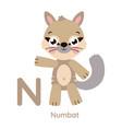 alphabet letter n character