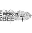 bee supplements for your health text word cloud vector image vector image