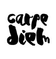 carpe diem - handdrawn lettering vector image