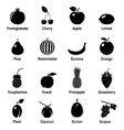 Fruits and berries icons set vector image