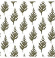 seamless fit evergreen tree decoration background vector image