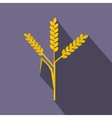 Wheat ears icon flat style vector image vector image