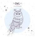owl fairy vector image