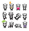 cute cartoon chinese panda bear character vector image