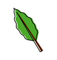branch coffee leaf vector image vector image