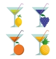 Cocktails fruits and summer concept vector image vector image