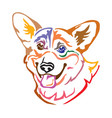 colorful decorative portrait of dog welsh corgi vector image vector image