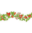 cranberry branch pattern vector image