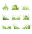 eco green grass set vector image