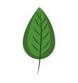 leaf eco symbol vector image