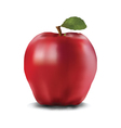 red ripe Apple vector image vector image