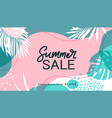 summer sale background colorful palm leaves vector image