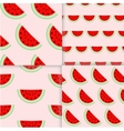 colorful seamless patterns watermelon slices vector image vector image
