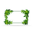 frame green cannabis leaves template frame vector image