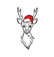 head of a deer vector image