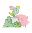 pig animal farm with garden and flowers