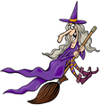 witch on broom cartoon vector image vector image