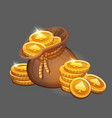 bag of gold coins icon vector image vector image