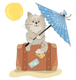 Cat in the vacation vector image