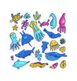 colorful set of cartoon marine animals vector image