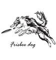 frisbee dog vector image