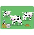Funny Cows vector image vector image