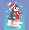 holiday christmas card with cute penguin vector image vector image
